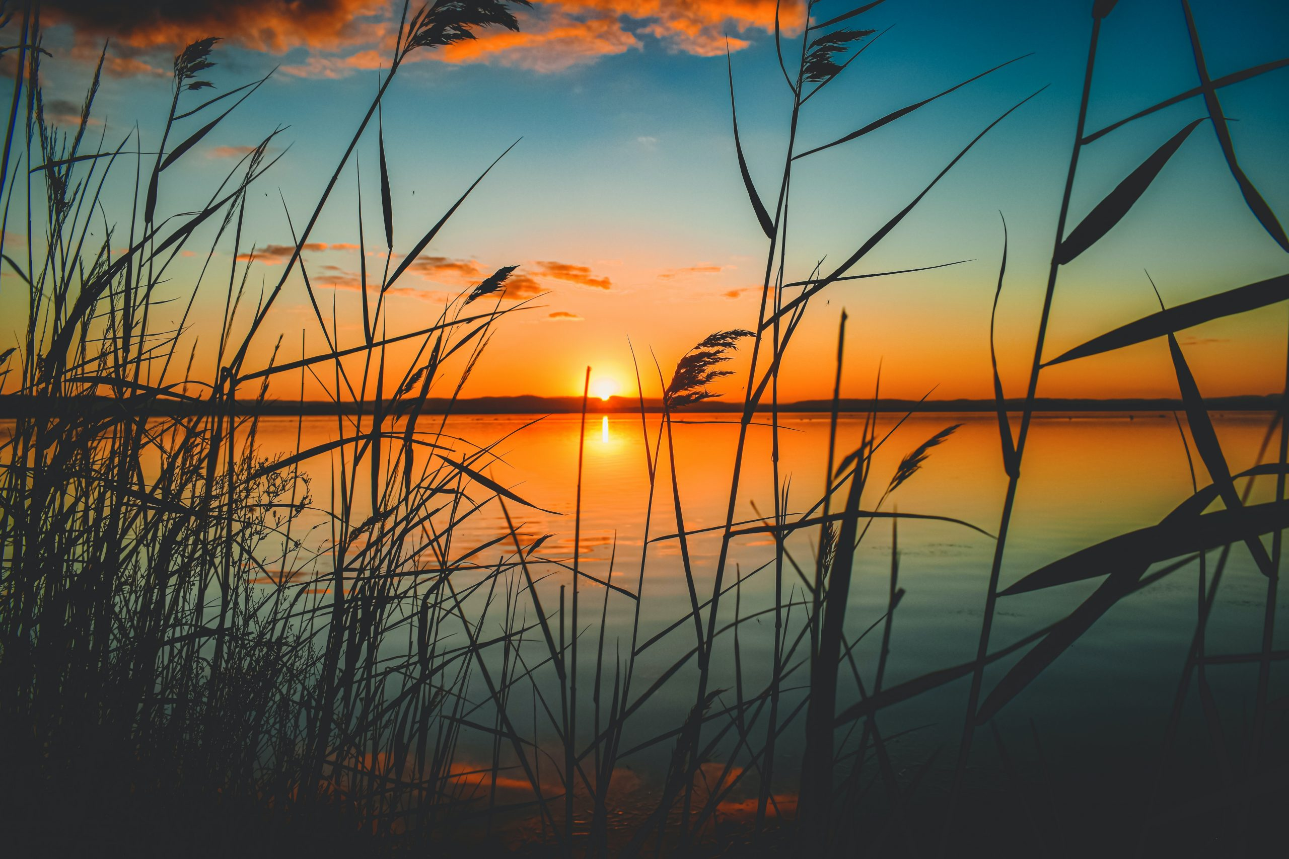 Living in Empowered Peace | Dustin Warncke's Blog